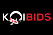 Koibids High Quality Koi Fish Online